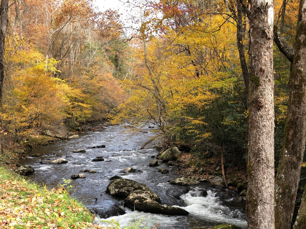 Scenic Drive along the Little River in the Smoky Mountains