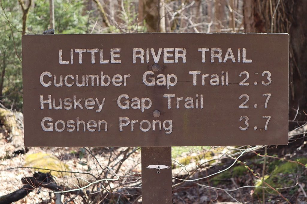 Little River Trail Sign at Elkmont Campground Smoky Mountains