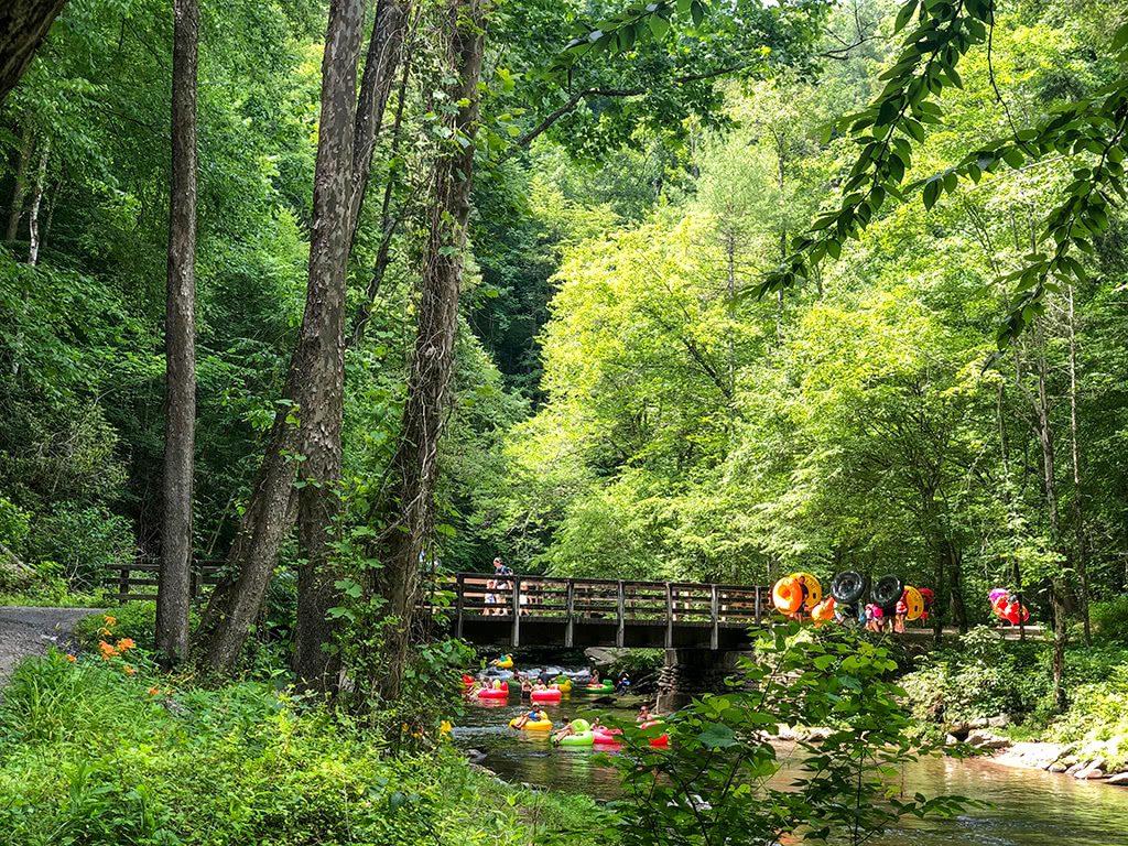 Bridge on Deep Creek Waterfalls Hike