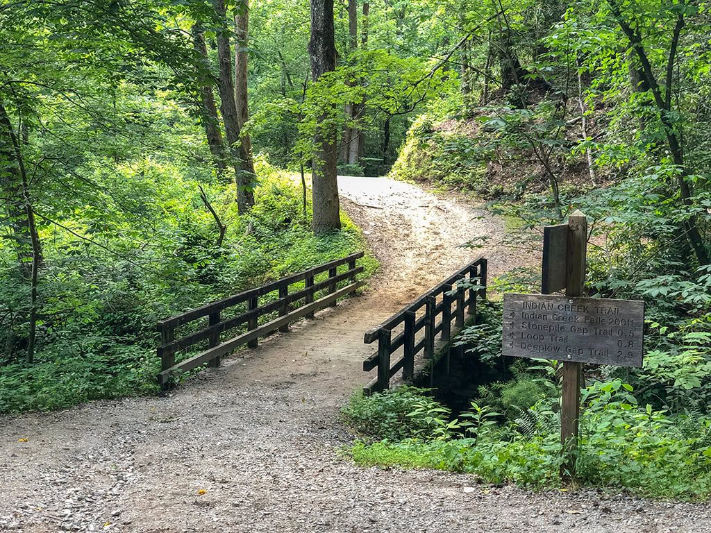 Bridge on the Deep Creek Waterfalls Hike