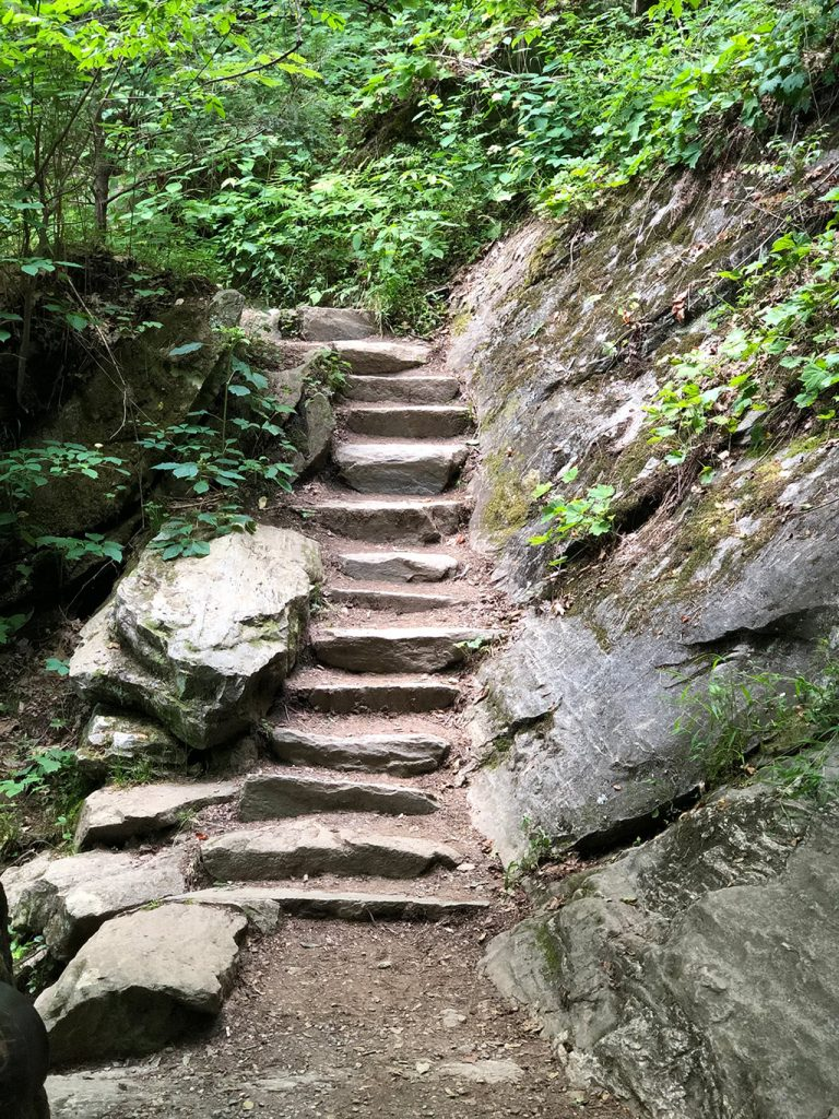 Steps near Juney Whank Falls on the Deep Creek Waterfalls Hike