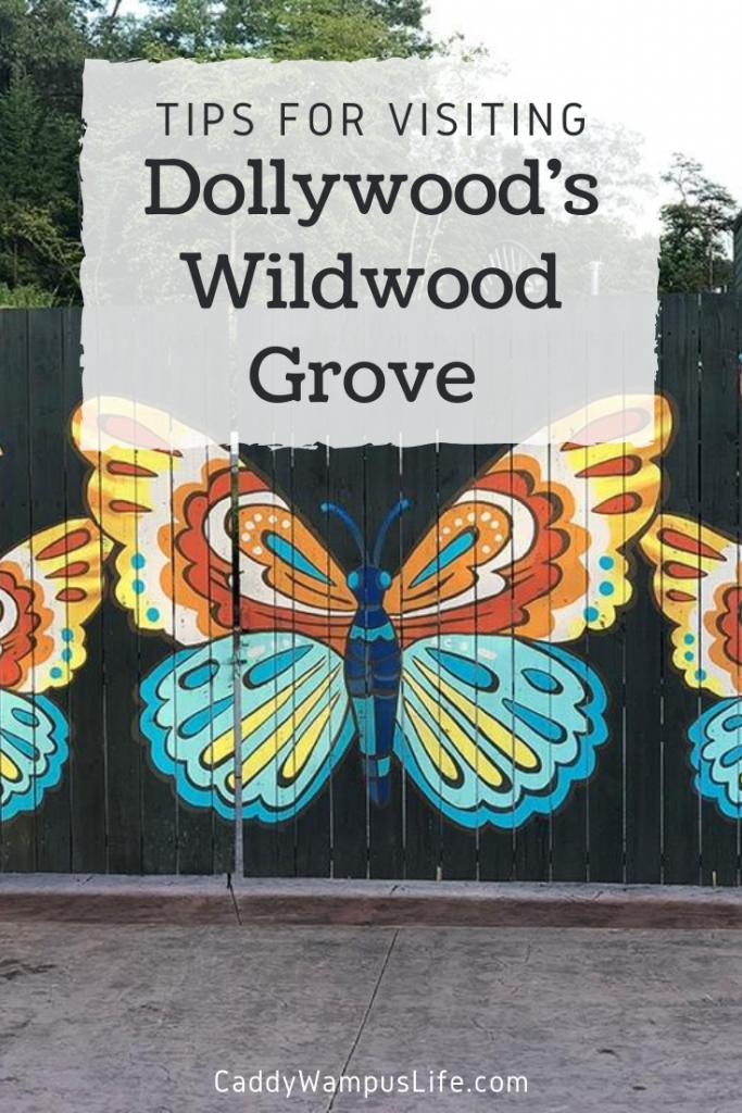 Dollywood Wildwood Grove Pinterest