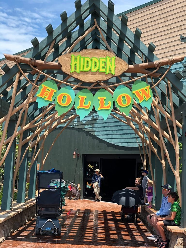 Hidden Hollow at Dollywood Wildwood Grove
