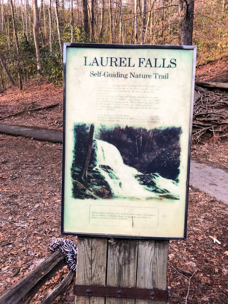 Laurel Falls Nature Trail