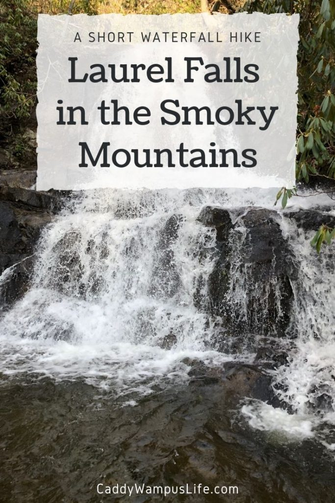 Laurel Falls Trail – Hike to Laurel Falls in the Great Smoky Mountains