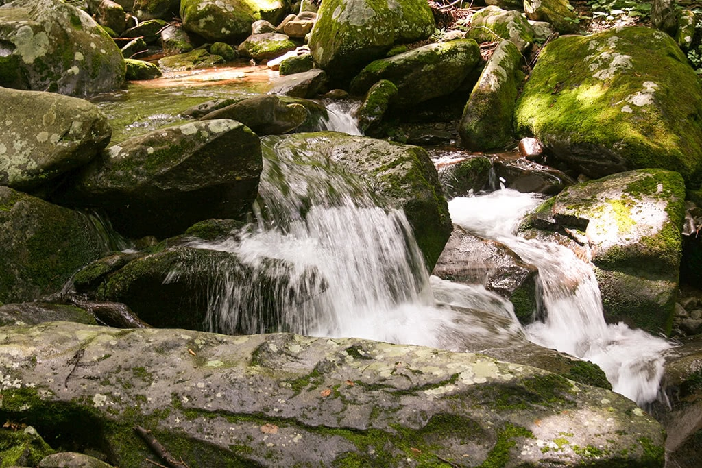 The Roaring Fork is one of the most scenic drives in the smoky mountains