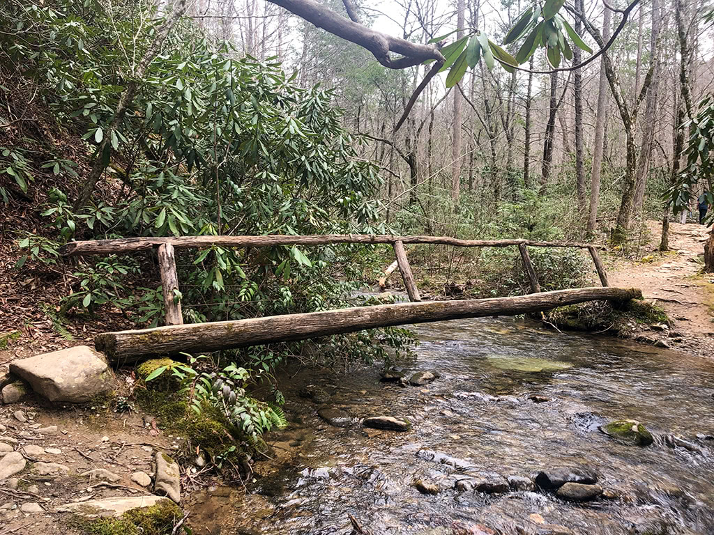 Footbridge on Metcalf Bottoms Hike to Little Greenbrier School