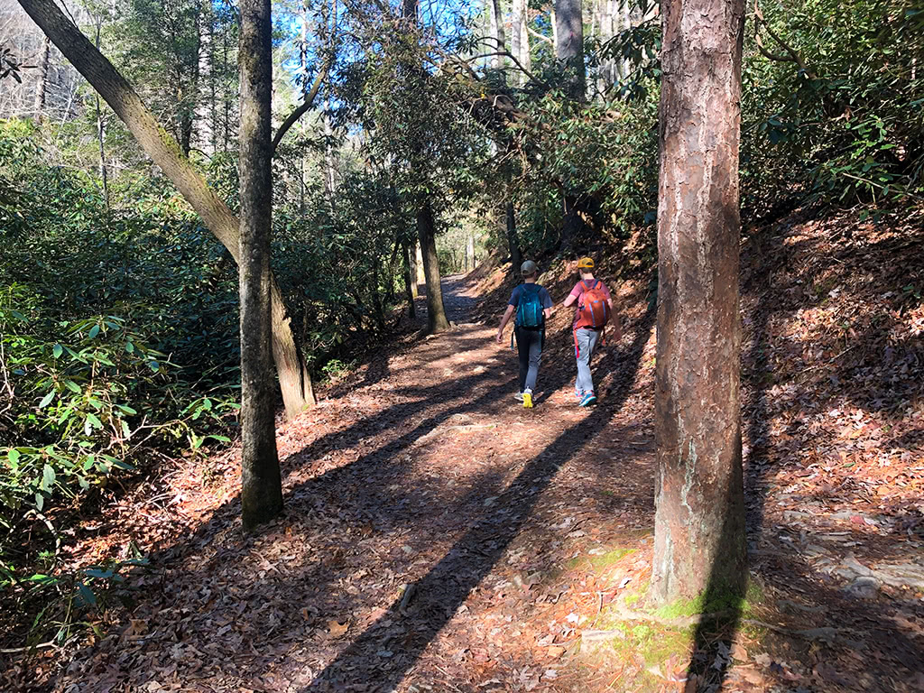Abrams Falls Trail - Relatively Flat First Part