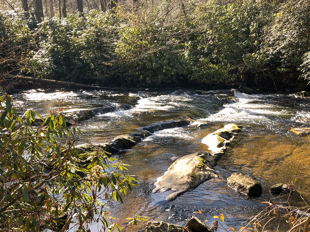 Abrams Falls Trail - Walks along the creek