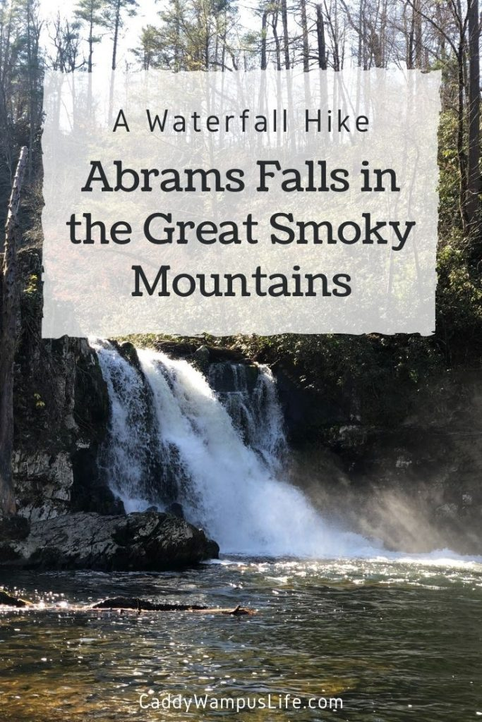 Abrams Fall Hike in the Great Smoky Mountains