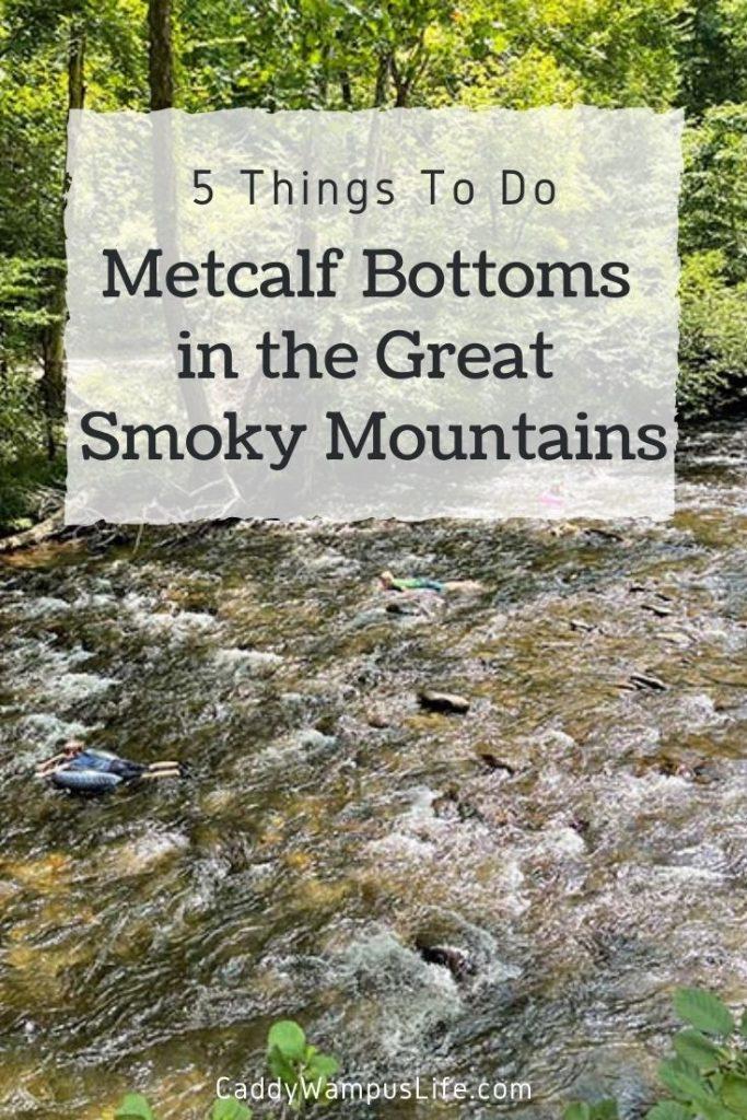 Metcalf Bottoms Picnic Area in the Smoky Mountains